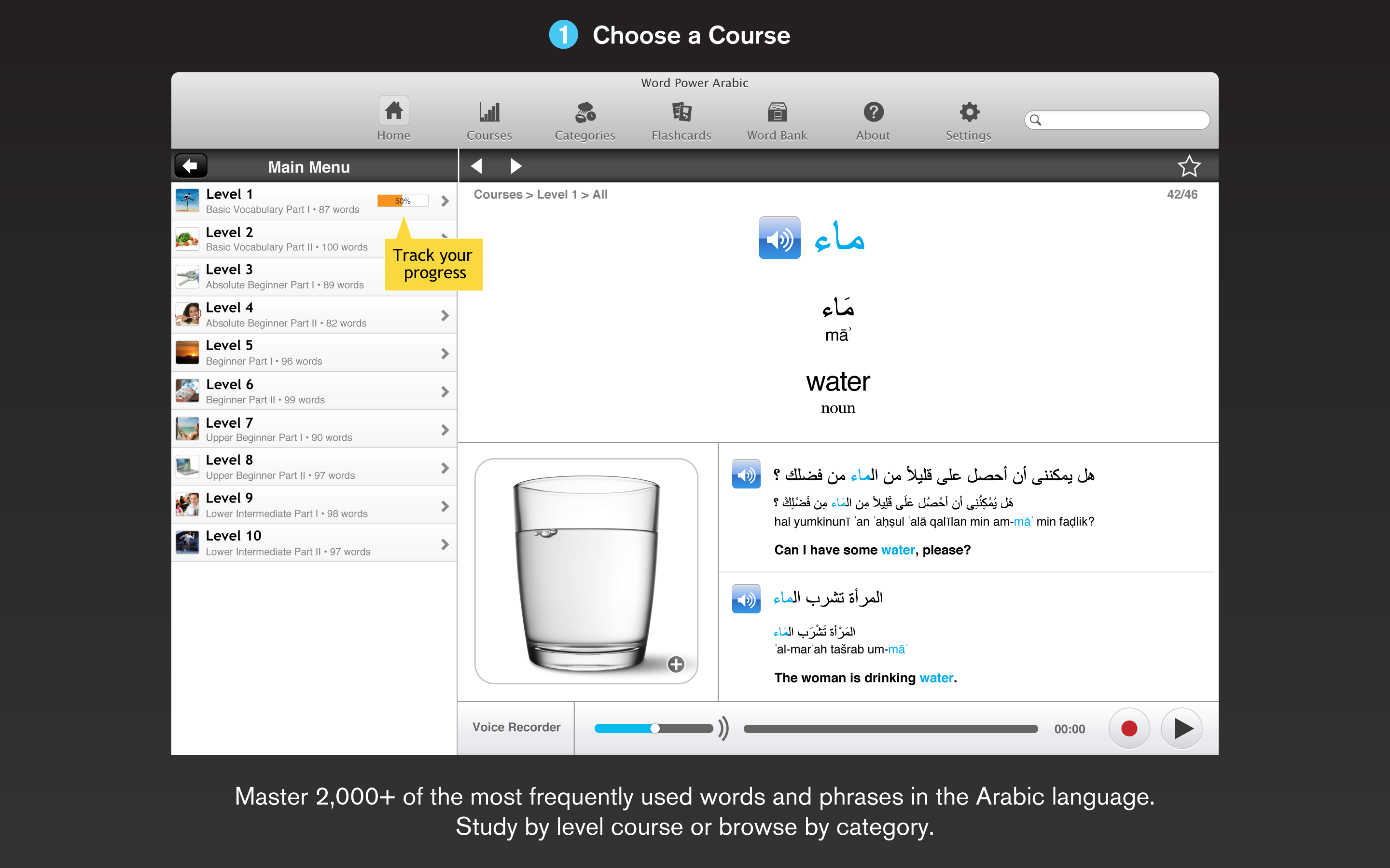 WordPower Arabic for the Mac